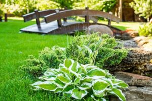 How Additional Landscaping Can Affect Your Insurance