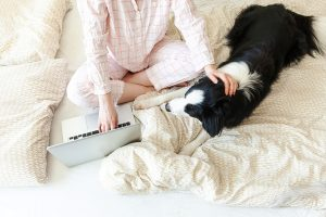 Woman in pajamas working remotely on laptop at home with her dog.