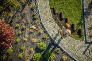 Aerial of landscaper laying down grass next to a cobblestone walkway and a garden with bushes and an irrigation system